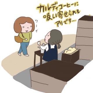 【KALDI購入品レビュー】カムジャ麺、チーズ、ココナッツ