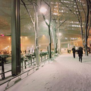 大雪の夜に